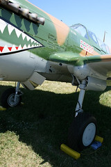 """P-40 Warhawk (5) • <a style=""""font-size:0.8em;"""" href=""""http://www.flickr.com/photos/81723459@N04/9279493100/"""" target=""""_blank"""">View on Flickr</a>"""
