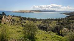 Hokianga Harbour (scrumpy 10) Tags: newzealand nature landscape nikon natur aotearoa mothernature neuseeland landschaften d800 jacqualine ozeanien newzealandnature scrumpy10