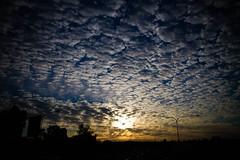 08/20 - Sunrise sky (rolfy_dev) Tags: brisbane project365 3652013