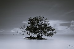 just me, Melaka 31/8/2013 (abiommacro2) Tags: white black beach landscape nikon long shutter bnw melaka malacca seascpae d7000