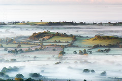 Islands (Bob Small photography.) Tags: uk autumn england mist west misty fog sunrise landscape dawn countryside britain country somerset deer westcountry lear deerleap nikond3100