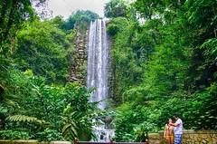 Singapore Waterfalls (Eustaquio Santimano) Tags: world park bird waterfall singapore artificial waterfalls aviary jurong tallest openaccess peopleenjoyingnature