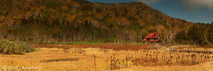 S o m e o n e E l s e T o B l a m e (AnthonyGinmanPhotography) Tags: autumn panorama autumncolours naganoprefecture novoflex theredhouse tsugaikekogen tsugaikenaturalpark leefilters olympuse620