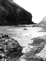 Dead Man's Cove - BW