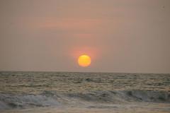 Varkala_sunset_5877 (Manohar_Auroville) Tags: sunset sea sun india beach beauty birds kerala varkala manohar luigifedele