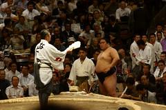 日馬富士 画像34