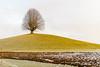 Gurnigel (Edi Bähler) Tags: baum feld gurnigel himmel hotpick kantonbern landschaft natur pflanze schweiz switzerland wolken clouds evefototour landscape nature plant sky tree nikondf 3570mmf28