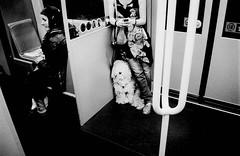 214 (Digirolamo Nicola) Tags: wien dog cane perro hund ubahn u4 friedensbrcke filmisnotdead cippascan