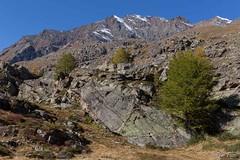 Grand Paradis (Rmi Pozzi) Tags: alpes massifdugrandpararadi valsavarenche automne granparadiso italie montagne paysage rochers valdaoste