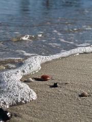 Silent Surf by Julie Bradbury (AccessDNR) Tags: 2016 photocontest fall autumn scenery sceniclandscape beach tide cedarpointbeach patuxentriver stmaryscounty