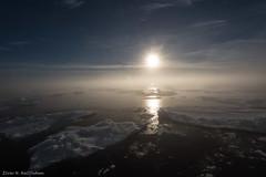 DSC_6534.jpg (Elvar H) Tags: arcticocean helmerhansen siarctic ice iceedge