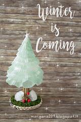 winterIsComing_07w (Morgana209) Tags: winter winteriscoming mushroom finghi sottobosco inverno incanto ricilo pirottini biscottialburro diy faidate creativit handmade alberp tree abete riciclocreativo natale christmas natale2016