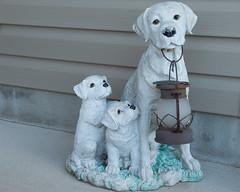 Welcome (Robin Penrose) Tags: 201611white 7daysofshooting week18 white wornandweatheredthursday sad welcome inneedofsomepaint dog puppies lantern frontporch