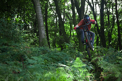 IMG_6206 (Mikedb13) Tags: downhill vtt fougres bois spcialized