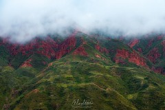A media vista... Desde Valle de la Luna , Bolivia. (Almodovar Photography) Tags: mediavista neblina fog valledelaluna bolivia potosi mountains rain