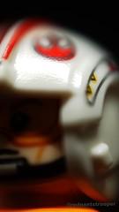 Skywalker (Alexandr Nuarin) Tags: lego legography legominifigs legograpy blizzard holiday pilot cold helmet battlefront imperial starwars starwarsforceawakens starwarsv starwarsvi stormtrooper365 stormtrooper snow minifigs minifigures macro empirestrikesback endor jedi