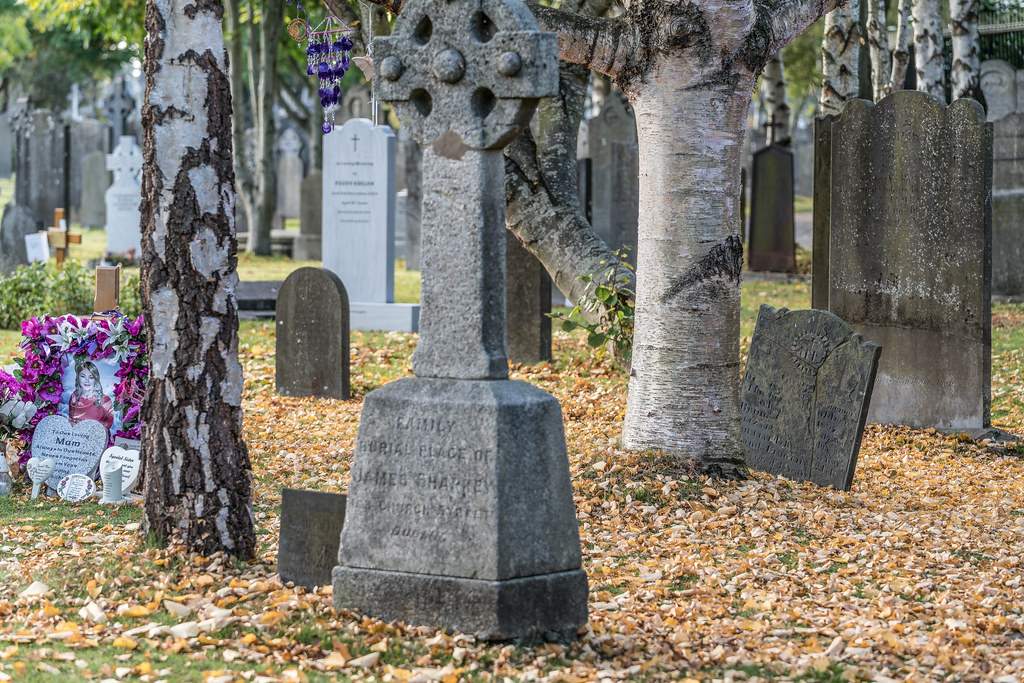 A QUICK VISIT TO GLASNEVIN CEMETERY[SONY F2.8 70-200 GM LENS]-122053
