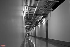 The Grand (MBates Foto) Tags: thegrand thegrandhotel color indoors perspective depth spokane washington easternwashington pacificnorthwest nikon nikond810 nikkor24120mm availablelight existinglight stockimage unitedstates 99201