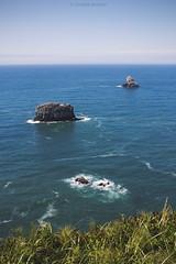 Cape Meares (Coralee Annibal) Tags: landscape ocean nature outdoors blue oregon oregoncoast exploreoregon vertical