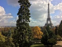 Paris (SETIANI LEON) Tags: paris france tower eiffel tour