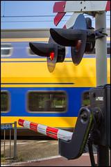 """NS VIRM 8656 """"IC702659"""" - Heerle (Mark van der Meer) Tags: ns trein virm heerle noordbrabant nederland nl overweg levelcrossing spoorwegovergang prorail nederlandsespoorwegen train zug bahnubergang passageaniveau"""