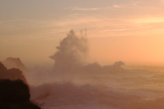 Big wave on the South Shore (Tom Clifton) Tags: pointlobos bigwaves sunset southshore