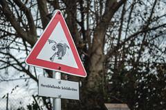 Zotter (papedo_pp) Tags: schild schildkrte zotter bergl steiermark sterreich at
