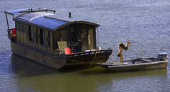 Morning Exercises (swong95765) Tags: boat houseboat speedboat river water guy handstand
