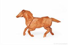 Horse (Koh) 2013 (cavemanboon*) Tags: horse ronaldkoh  origami   paperfolding cavemanboon singapore malaysia paper folding boon  yearofthehorse