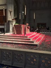 """The altar at Grace Cathedral covered in poppies. Each year, during the Remembrance Day service, after reading the poem """"In Flanders Fields"""" poppies float down from the ceiling of the Cathedral, as people are singing Amazing Grace. (JoeGarity) Tags: ww1 remembranceday altar poppies sanfrancisco gracecathedral"""
