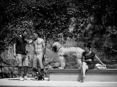 The life is so great! (SibretManu) Tags: luxembourg streetphotography portrait street black white bw noir et blanc monochrome candid going moments decisive moment creative commons flickr flickriver explore eyed eye scene strassenfotografie fotografie city square squareformat photography bwartaward skate skateboard skatepark péitruss