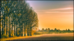 glowing landscape (Der Zeit die Augenblicke stehlen) Tags: bume deutschland eos700d hth56 landscape landschaft orangerie thomashesse thringen winter blue contrast green trees yellow