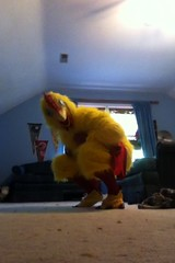 Chicken suit 53 (ChickenJay) Tags: bird chicken yellow happy costume mask wing beak suit talon hen birdbrain toony