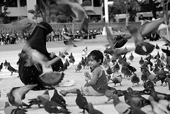Maldives bw (anthonyasael) Tags: family portrait baby male bird girl smiling birds animal scarf children asian flying kid funny asia asians child veil pigeon muslim islam religion headscarf mother hijab covered portraiture hungry maldives havingfun sharia midadultwoman headscarves onewomanonly mdv tchador childrenonly indiansubcontinent onegirlonly asianethnicity anthonyasael