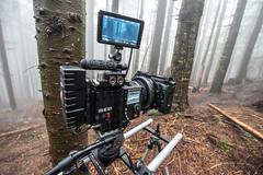 DSC_1373 (Ryan Shabacon) Tags: downhill cypress mountainbiking d800