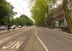 Sarphatipark (jpmm) Tags: amsterdam bomen autos fietsen 2012 zuid platanen bovenleiding tramspoor