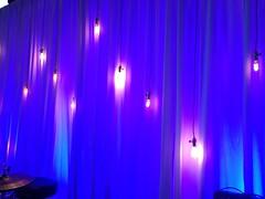 Pendant Bulbs - Blue Lighting - Drapery Lighting