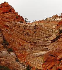 Geological layers - Zion (Robyn Hooz) Tags: park canon eos utah rocks national l layers zion usm roccia ef1740 strati 600d
