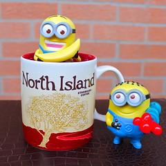 Starbucks North Island (chopchop11) Tags: me island north starbucks mug minions despicable