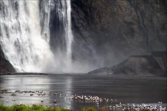 Cascata a Montmorency (livia.com) Tags: canada quebec acqua montmorency fallingwater cascara