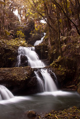 iOS 7 Maui Waterfall Parallax Wallpaper (mJohnstonPhotography) Tags: wallpaper hawaii waterfall maui parallax botanicalgardens iphone iphone5 iphone5s ios7 iphone5c