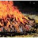 """Cuatro Fuegos<br /><span style=""""font-size:0.8em;"""">El fuego, producto de las velas depositadas todos los presentes.</span> • <a style=""""font-size:0.8em;"""" href=""""https://www.flickr.com/photos/78169357@N03/10212288795/"""" target=""""_blank"""">View on Flickr</a>"""