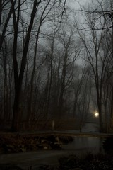 Winding Creek in the Mist (jerkybearproductions) Tags: wood bridge winter light plants mist tree nature fog clouds creek river dark landscape spring cabin stream pennsylvania creepy erie trout emlenton
