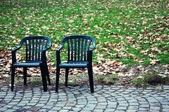 Quando saremo in due. (||| DavidO LestrangE |||) Tags: trip two rome roma leaves foglie poetry solitude poesia sedie viaggio due errideluca quandosaremoindue