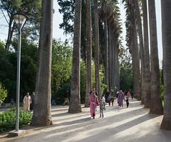 Fes, Morocco (Andrei Doubrovski) Tags: park morocco fez maroc fes