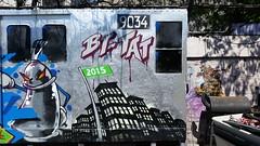 20150514_150552 (bg183tatscru@hotmail.com) Tags: train canvas artists mta 1980 spraycan tatscru southbronx graffititrain bg183 muralkings graffiticanvas bestartists bestgraffiti graffiticanvases bg183tatscru
