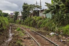 _Y1A1200 (Ninara) Tags: poverty kenya nairobi railway kibera slum