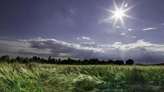 _MG_4166-Modifica.jpg (Andrea Centolani) Tags: verde flickr nuvole natura campagna cielo solo sole prato paesaggio facebook nuovole 500px andreacentolaniphoto 100fotografie