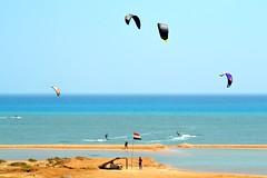 22_09_2016 (playkite) Tags: perfect condition kiteboarding vacations paradise adventure fun love sea sex september 2016