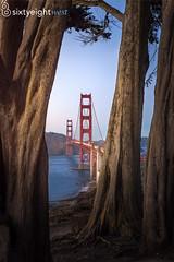 Sunset on the Golden Gate (erikuppman) Tags: bridge sanfrancisco goldengatebridge fortscott cypresstrees treeframe bucketlist sf